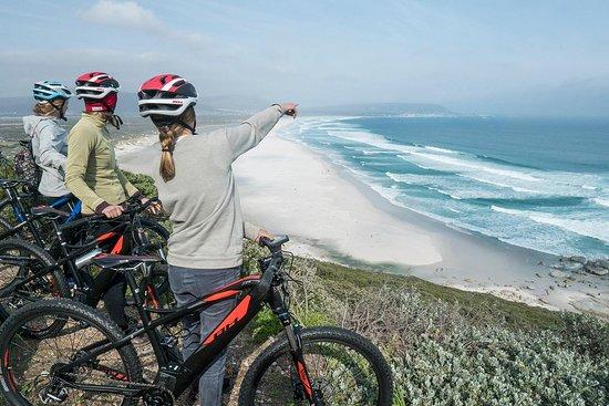 E Bike Tours Cape Town