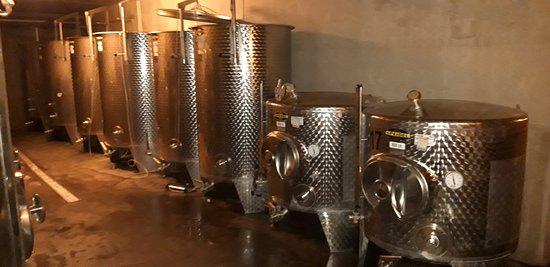 Den Ham, เนเธอร์แลนด์: In het grote keldergewelf alle apparaten die nodig zijn om oogst op fles te brengen
