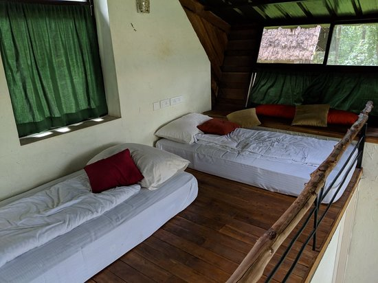 Zdjęcie Biligiriranga Hills