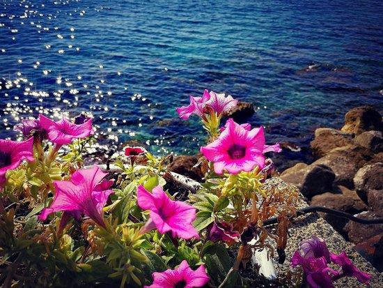 Marina di Fuscaldo照片
