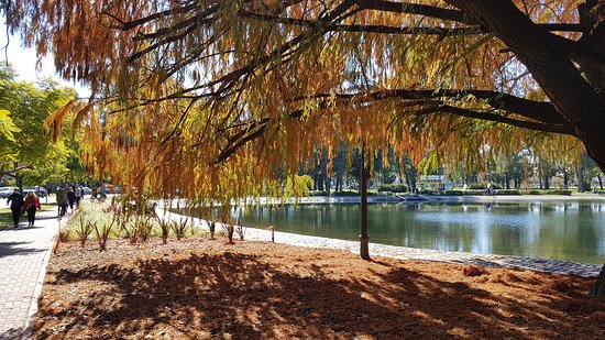 This is part of Palermo lakes