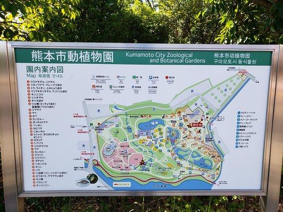 熊本 市 動 植物園