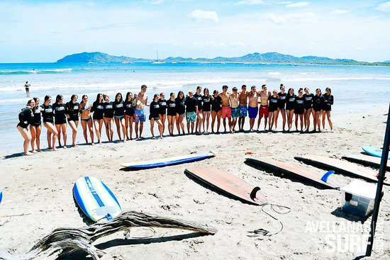 Avellanas Surf School