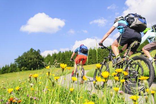 MTB Bike Tour fra Garda Lazise til...