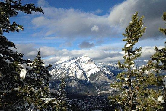 Rockies Winter Explorer 4-Day Tour...