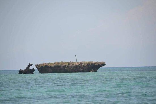 Funzi Island, Kenya: Sea safari funzi