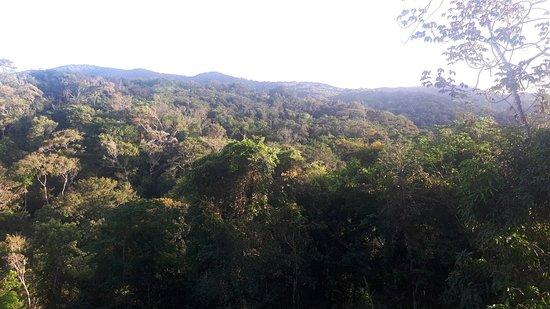 תמונה מMulungu
