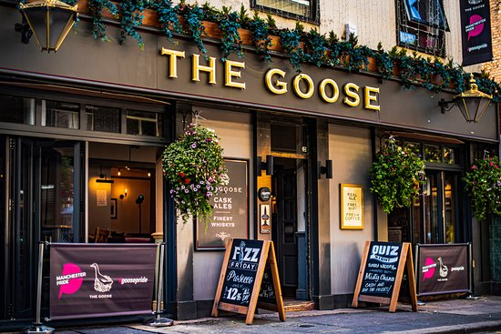 ‪The Goose‬