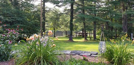 Shickshinny, PA: Beautiful backyard of Paper Mill Pines B&B