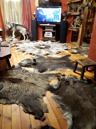 Just stayed at Hunting House Ezerkrasti in Lapmezciems, Latvia - a bizarre experience. It's a very fancy place filled with animal skins and stuffed animals. Definitely not for vegans :)