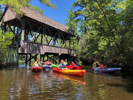 Outer Banks Kayak Adventures (Kill Devil Hills) - 2019 All You Need on icon kayak, thule kayak, old kayak, beach kayak, florida kayak, duck kayak,
