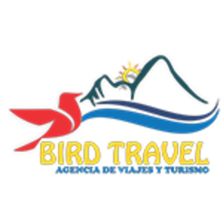 Bird Travel