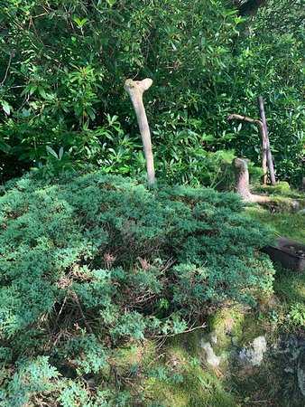 Whimsy, off the path in Kippford