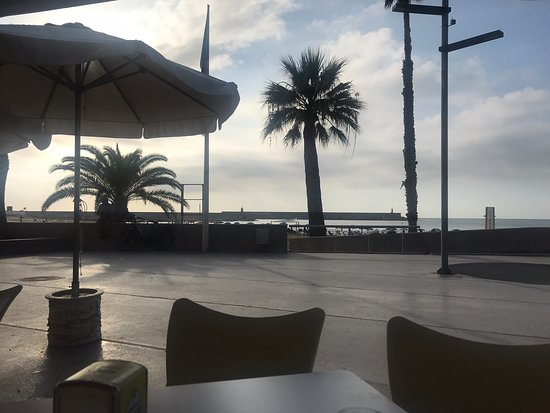 Bar Playa Benicarlo Restaurant Reviews Photos Phone Number