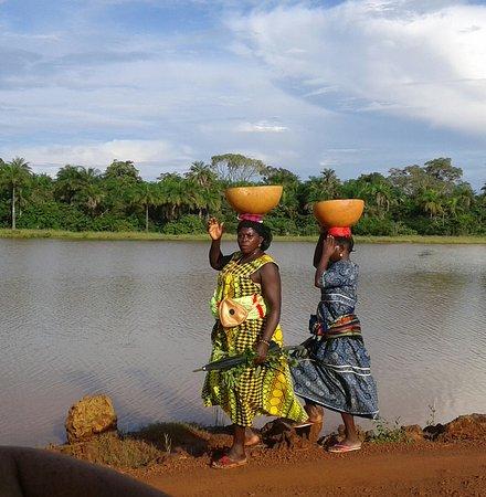 Guinea-Bissau: .
