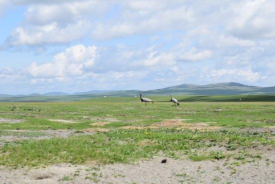 Day Tour of Gun-Galuut Nature Reserve صورة فوتوغرافية
