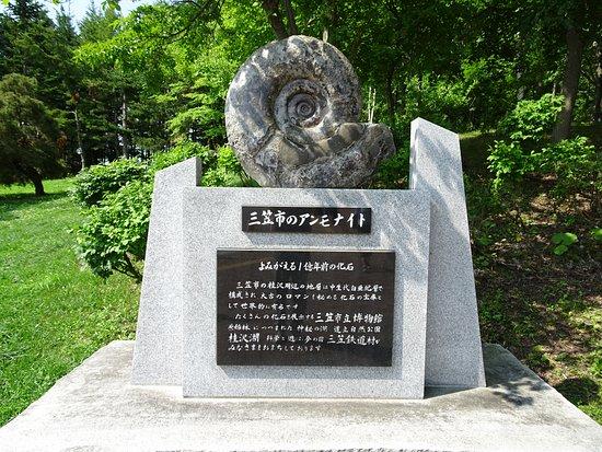 Iwamizawa Service Area Outbound
