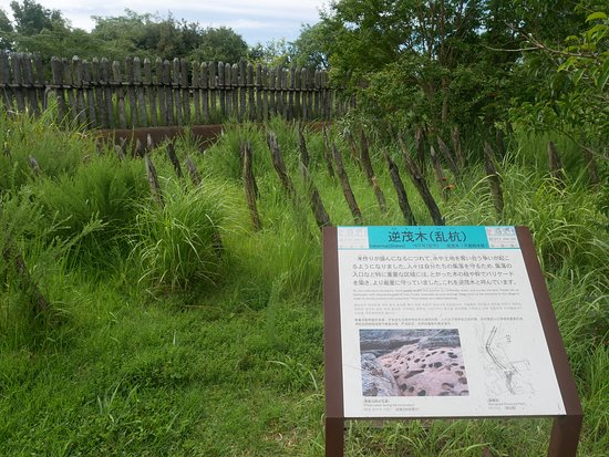 Yoshinogari-cho, Japan: Yoshinogari Historical Park 10