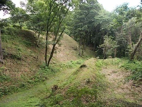 The Site of Oshima Castle (Daijo Park)