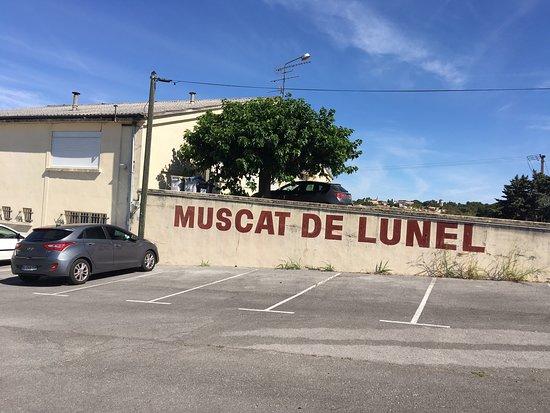 Cave Coopérative Muscat de Lunel