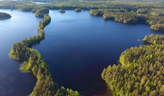 Liesjarvi, Finlandia: Birds eye view over the national