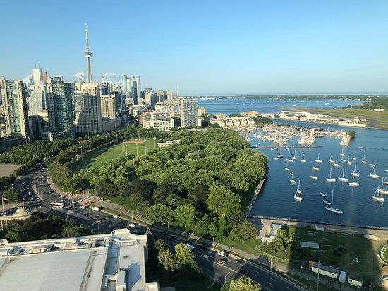 Hotel X Toronto by Library Hotel Collection: Roof top view