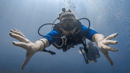 Diving at the Catalina's