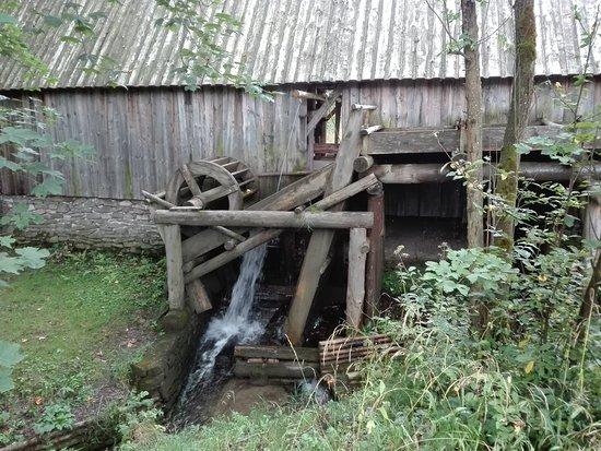 Zubrzyca Gorna, Польша: tartak wodny
