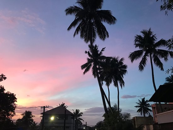 Kochi (Kochin), India: Cochin