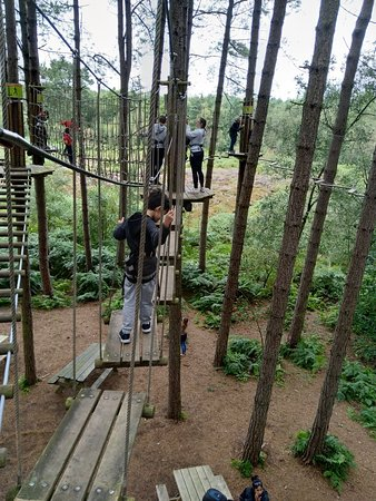 Go Ape Delamere 2021 All You Need To Know Before You Go With Photos Delamere England Tripadvisor