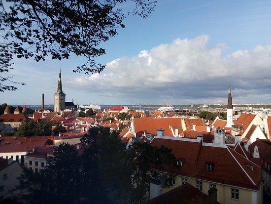Tallin, Estonia: Вид с обзорной площадки на Старый Город, Таллин