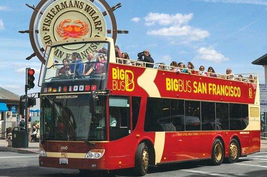 San Francisco Tours & Activities