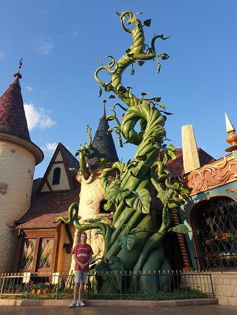 Giant beanstalk, Fantasyland