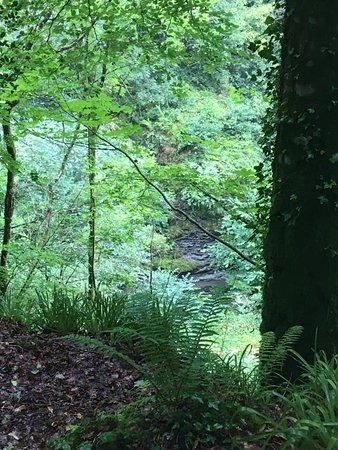 Amazing Natural Gorge