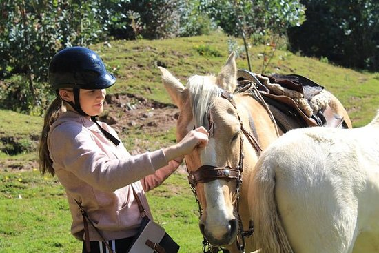 CUSCO DAY TOUR HORSE RIDING 4...