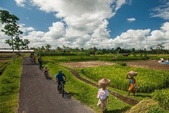 Ubud Village Cycling with 2 Hours Balinese Spa