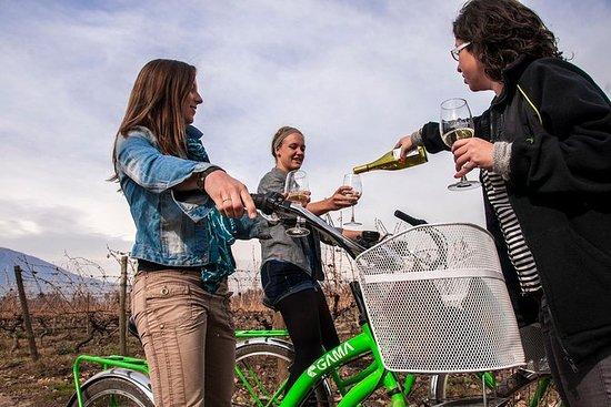 Fiets- en wijnreis Halve dag Maipo-vallei: Bike and Wine Tour Half Day Maipo Valley