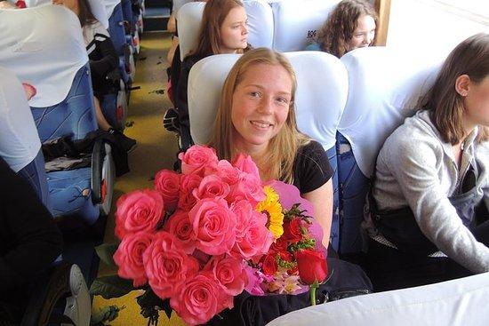 Full Day Roses og Otavalo Indian...