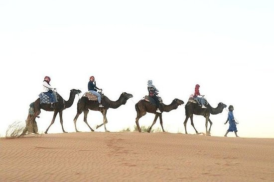 fes to fes 3天沙漠之旅