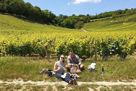 Vinresa Loire Valley