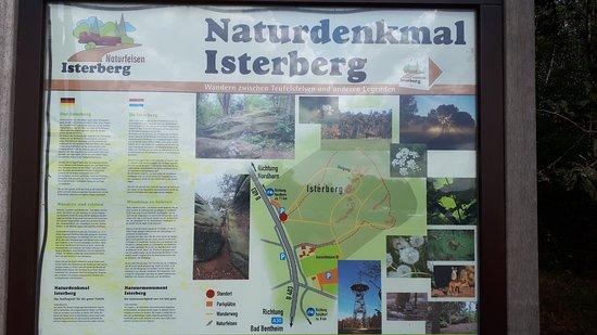 Isterberg, ألمانيا: informatiebord over de natuur bij de uitzichtstoren
