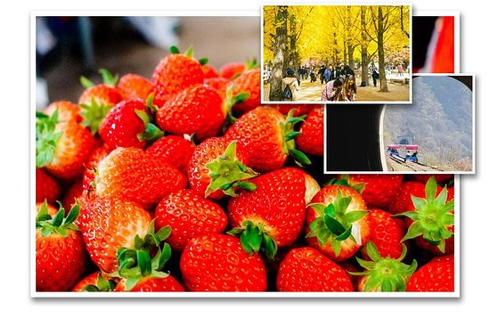 Strawberry Farm + Nami Island + Foot...