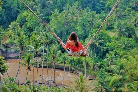 Excursión de un día a Bali Swing and...