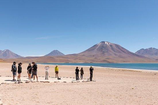 Altiplanic Lagoons和Piedras Rojas Tour...