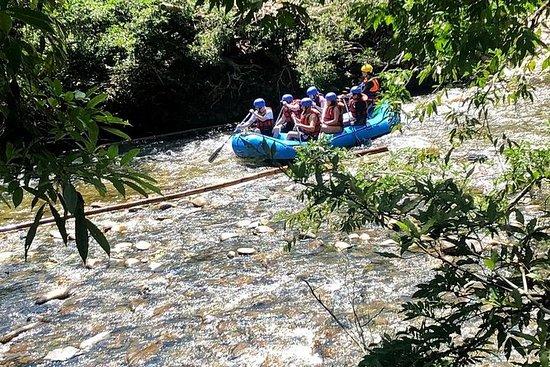 Rio Claro Jungle Reserve - VIP...