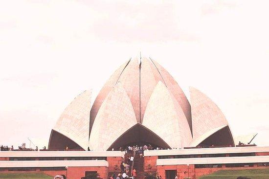 Delhi - Agra- Keoladeo nasjonalpark 2...