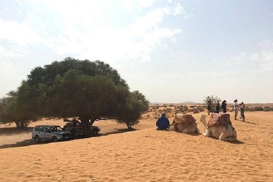 从阿加迪尔前往迷你撒哈拉的小团体一日游。
