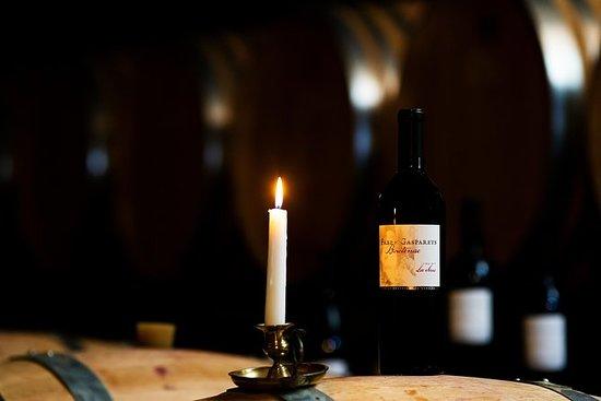 ChâteaudeLuc不同寻常的参观和品尝有机葡萄酒