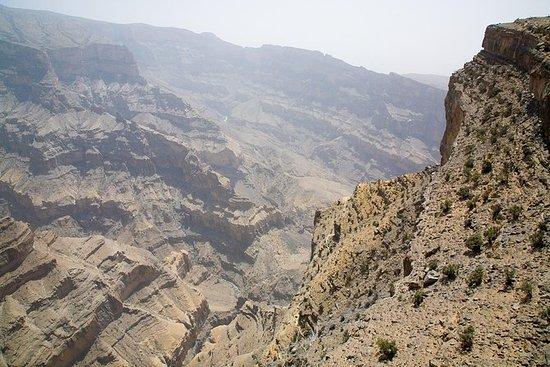 Desert Nights Safari Tour: tour di 4