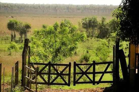 Feltdag i El Chaco - Explorá Cerrito